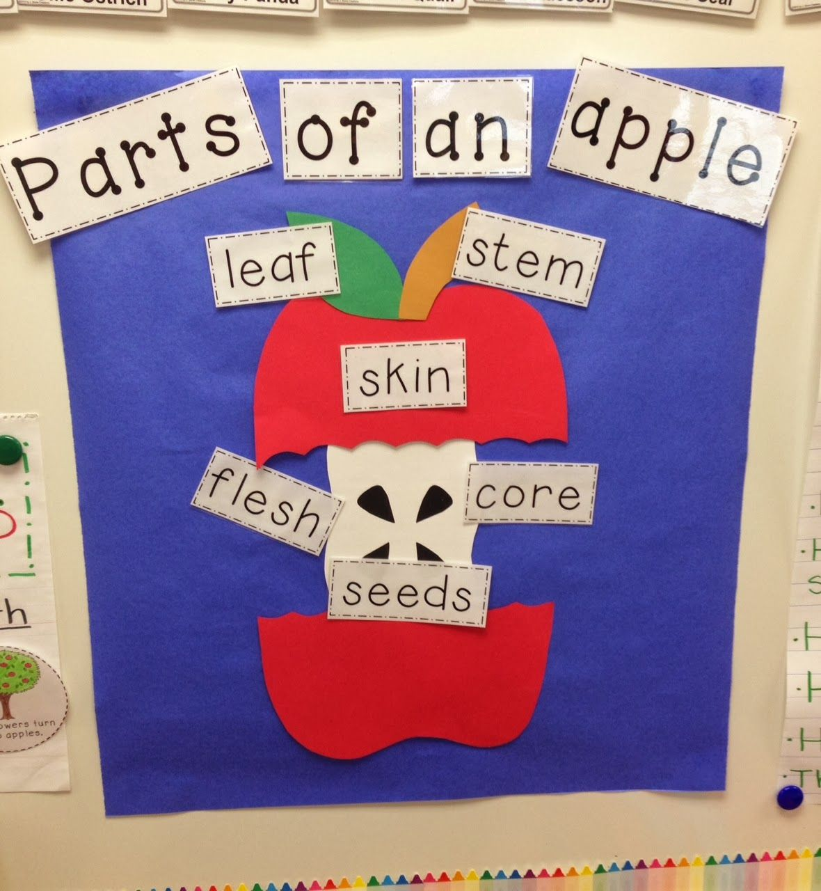 A Spoonful Of Learning Apple Week