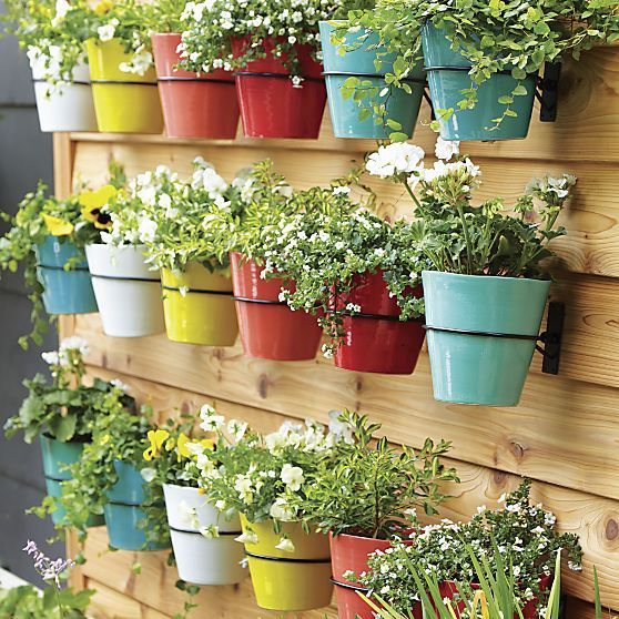wall mounted planter hooks