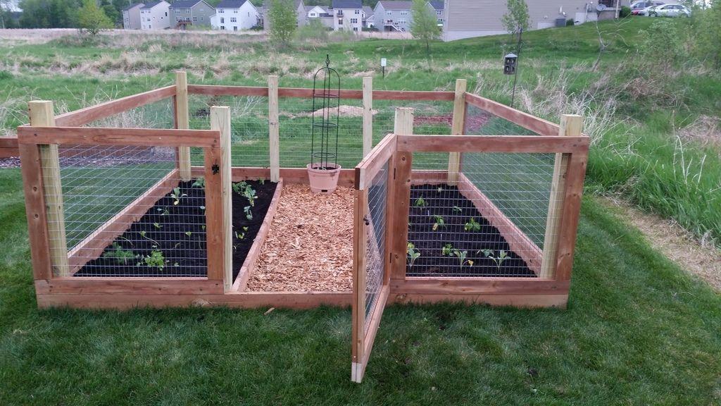 Above Ground Vegetable Garden Box