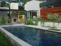 Note wide shallow ledge in pool...grass patches in stone ...