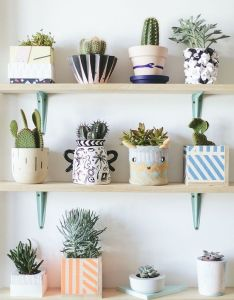 Modern indoor planters sweet horizon succulents house plants home decor decorating also rh pinterest