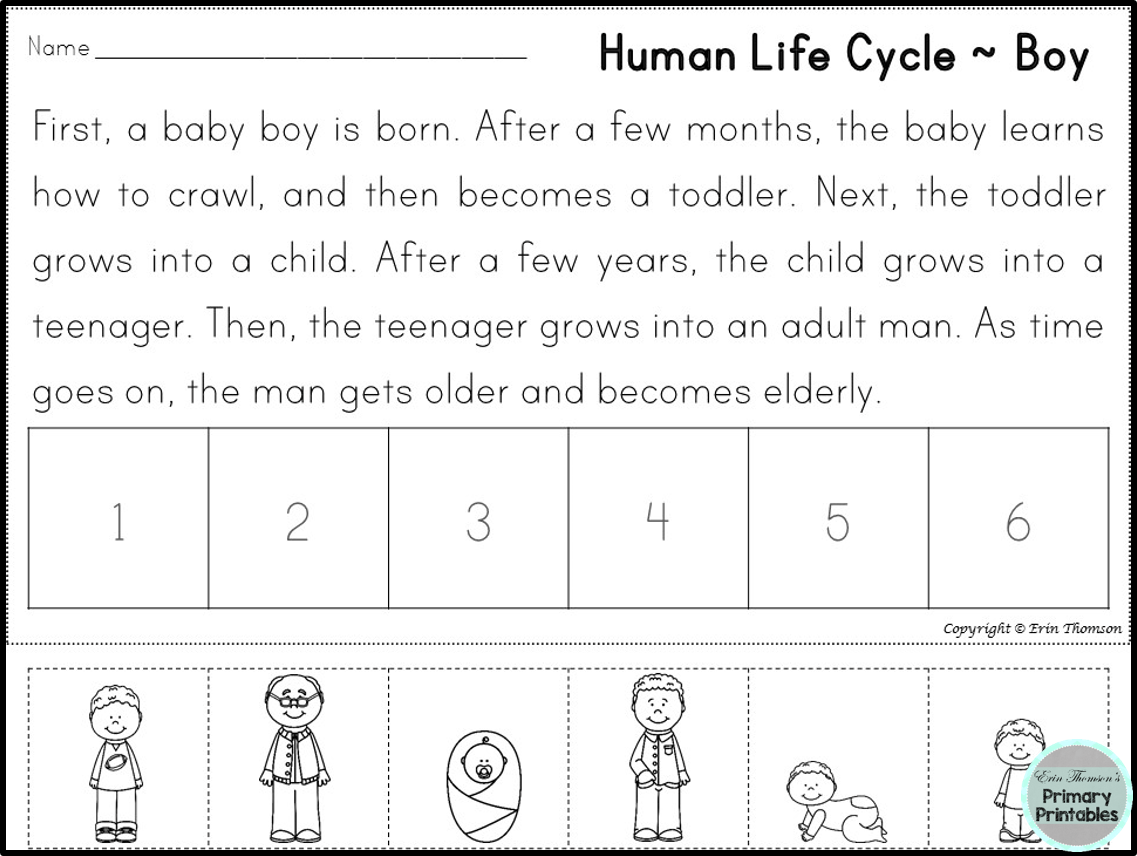 Free Human Life Cycle Sequencing Story Boy And Girl