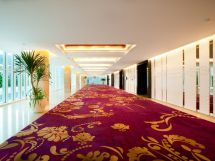 Ballroom Foyer With Beautiful Long Purple Carpet #hotel #