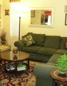 Green living room furniture decorating your has  visual appeal which is the reason why you must equip  also http club maraton rh pinterest