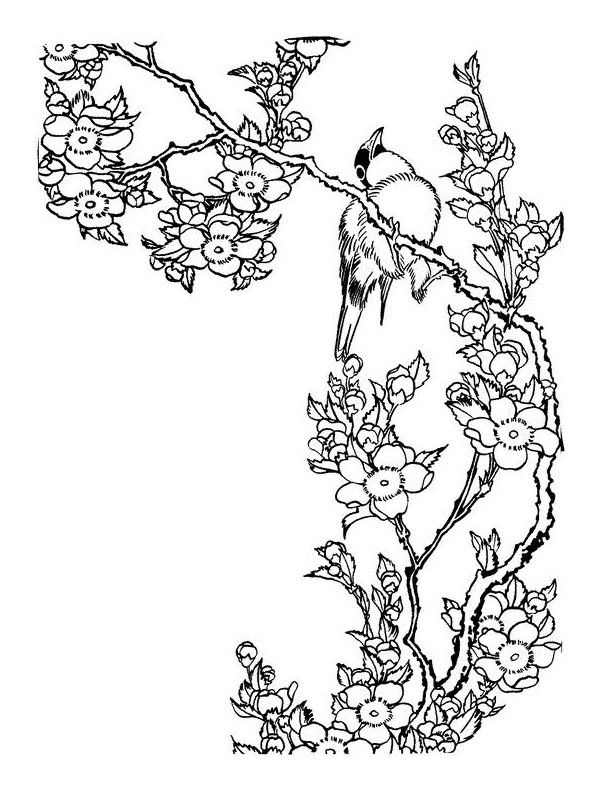 Art Therapy Coloring Page Japan Japan Roses And