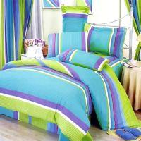 Lime Green Blue Purple Stripe Teen Girl Bedding Twin Full ...