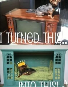 unconventional dog houses also tv sets and tvs rh pinterest