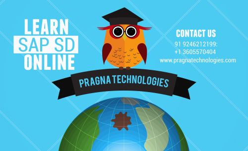 small resolution of get sap sd online training from pragna technologies we provide best innovativeteaching approach based on