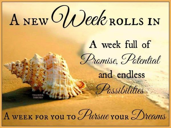 A New Week To Pursue Your Dreams BITS OF ADVICE