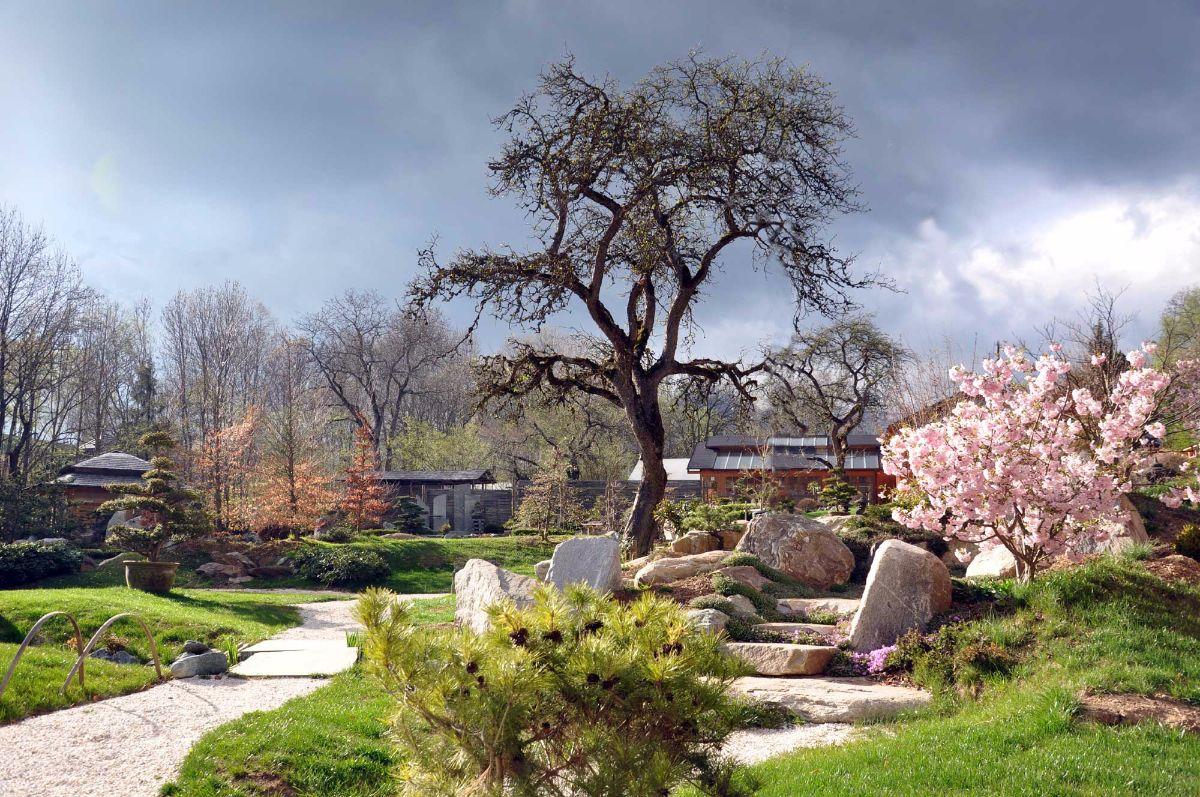 Bonsaimuseum Und Japanische Gärten Seit 1976 Beschäftigen Wir Uns