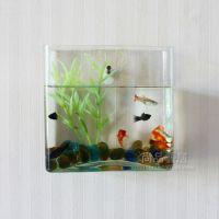 Cylinder wall mounted small glass fish tank vase fashion