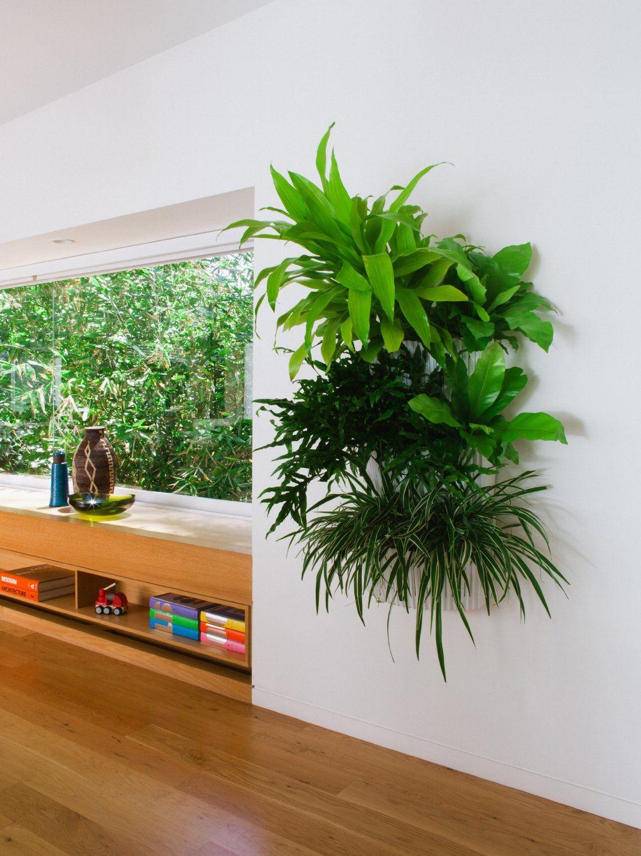 Vertical Garden House Plants Landscaping Ideas Gardens
