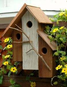 Bird house also houses and rh pinterest