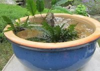 make a water bowl garden | Water features and Bowls