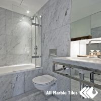 Bathroom Design with Bianco Carrara Marble Tile from www ...