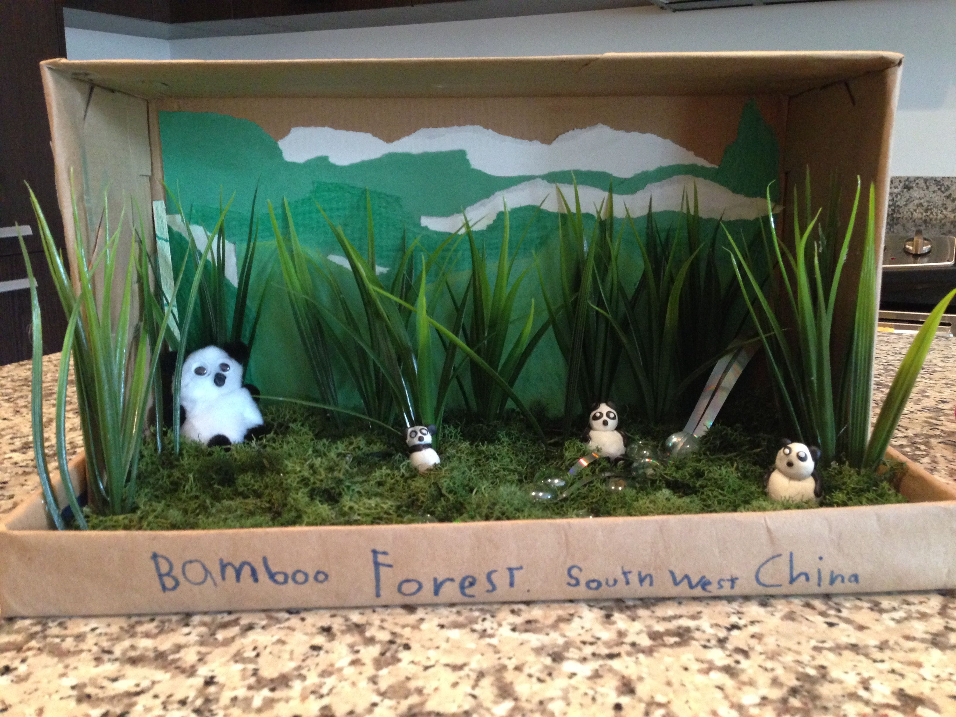 Shoebox Habitat Bamboo Forest Diorama 1st Grade
