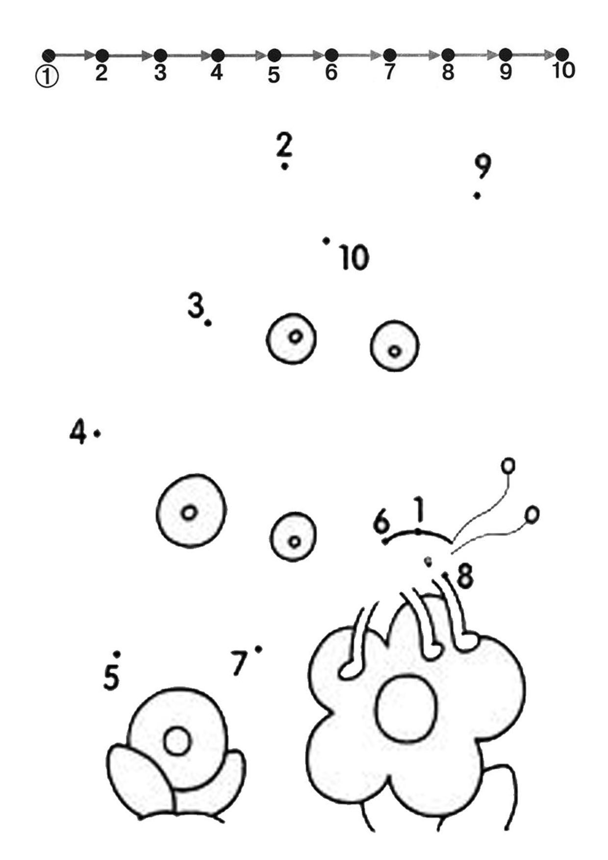 S S3 Central 1azonaws Imgvenok Insects Dot To Dot Dots Insects 004
