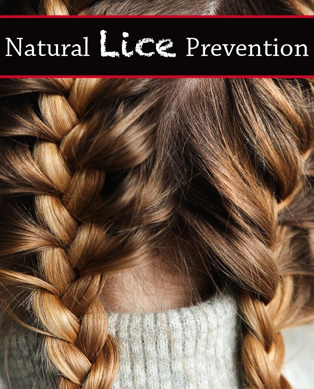 Best 25 Lice Prevention Ideas On Pinterest Lice
