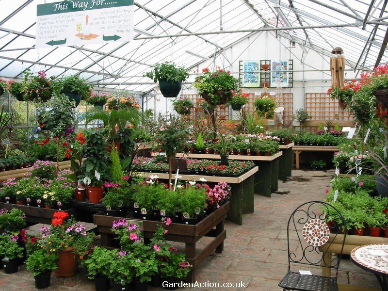 Plant Nursery Centers Littlehurst Nurseries Garden Centre