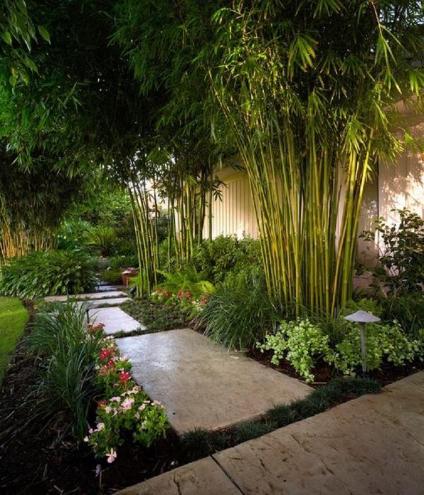 Impresionante Jardín De Bambú Ideas De Diseño De Paisaje Patio De