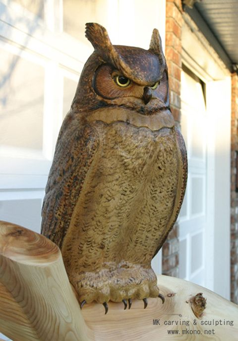 """Title """"great Horned Owl On Branch"""" Material Yellow Cedar"""