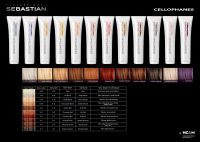 Sebastian Professional Cellophanes Color Chart. | Color ...