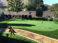 Small backyard putting green. No maintenance, lots of fun ...