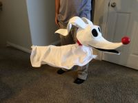DIY Zero dog Nightmare before Christmas | Halloween ...
