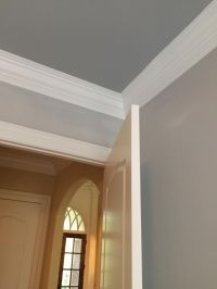 Walls: SW Passive Gray Trim: SW Pure White Ceiling: SW ...