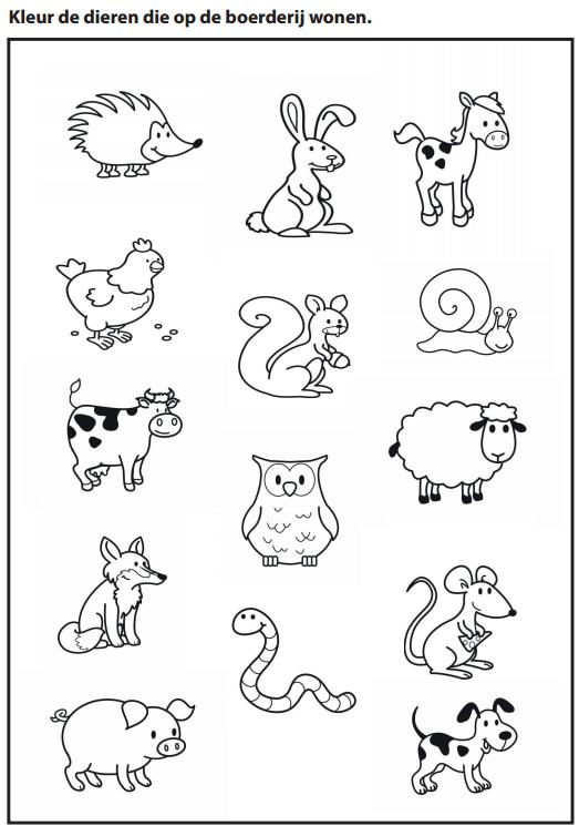 Kleur de dieren die op de boerderij wonen [Juf Marije