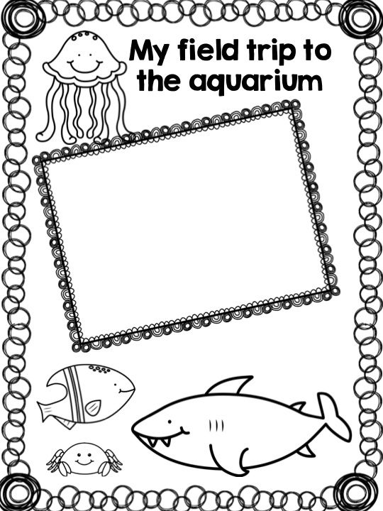 Kindergarten Scrapbook / Memory Book: A Fun Year of