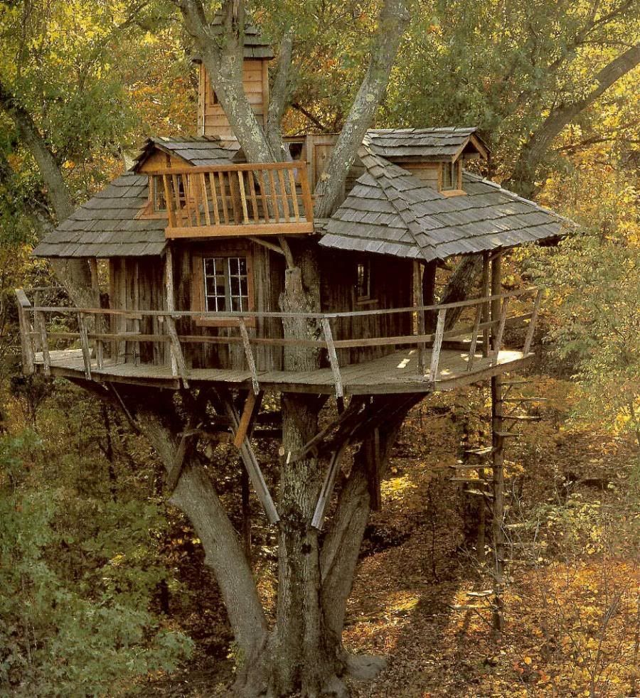 Unique Construction Of With Magnificent Wooden Style Tree Houses