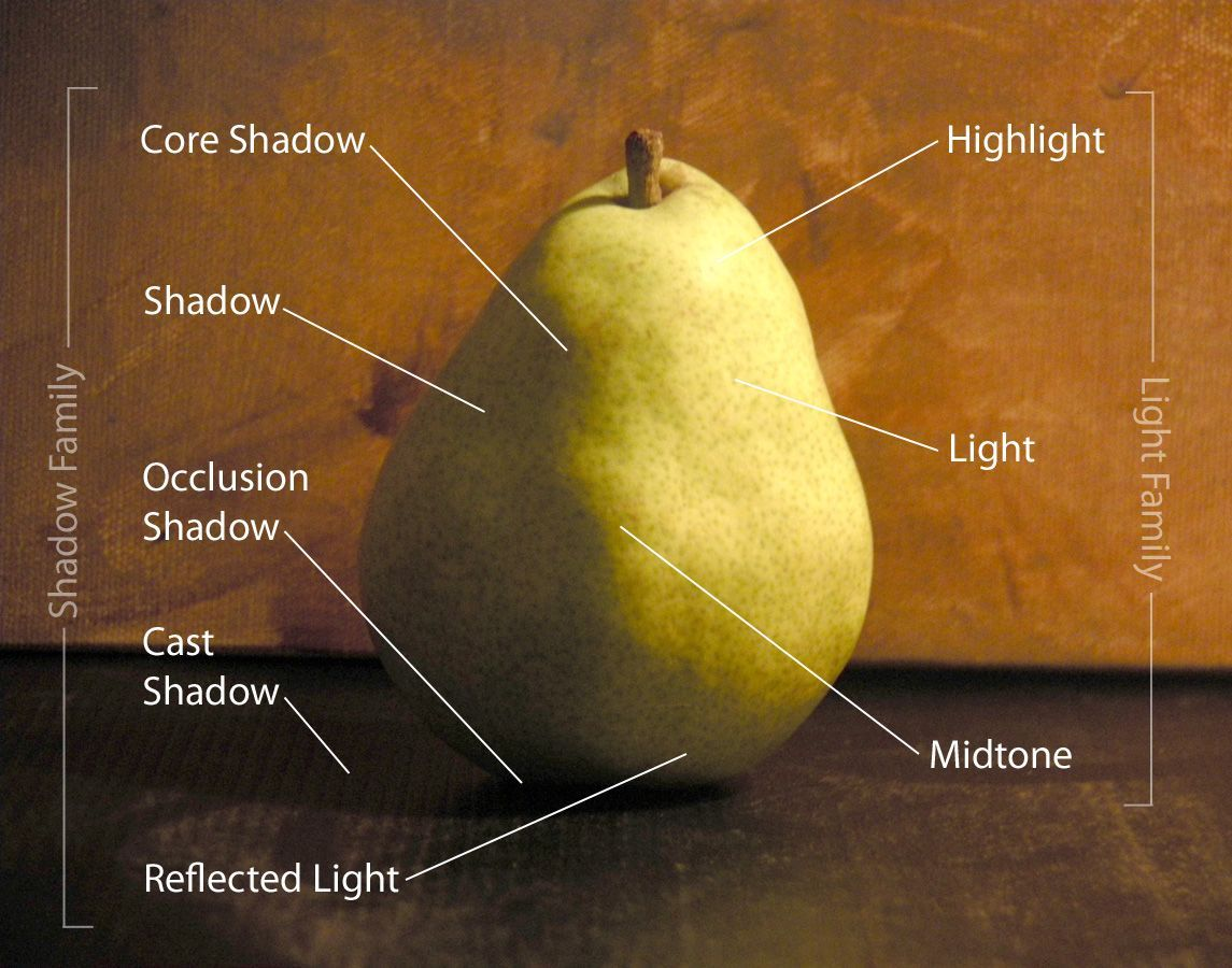 how to draw shadow diagrams 2003 s10 stereo wiring diagram online painting workshop 5 still life pinterest
