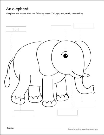 Parts of an elephant first grade writing and coloring