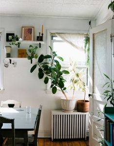 Kitchens also the bohemian life home decor pinterest plants and rh