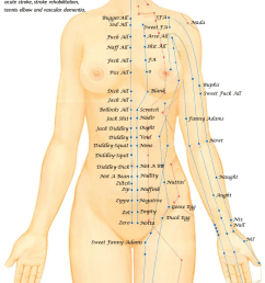 printable acupuncture point location chart facial features pressure ulcer location diagram pressure ulcer prevention points chart [ 801 x 1560 Pixel ]