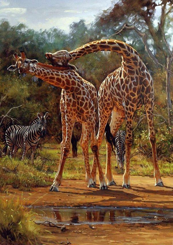Lute Vink African Wildlife Art Giraffe