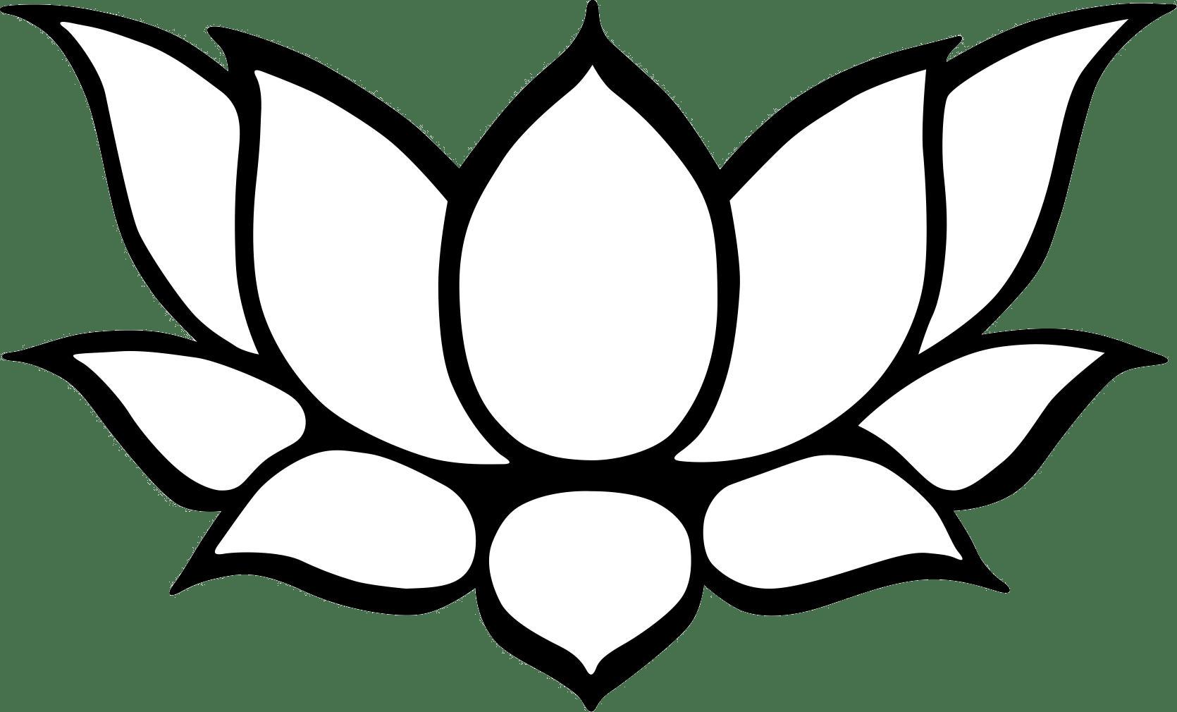 Lotus Line Drawing