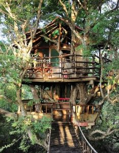 tree house design ideas your kids would love also rh pinterest
