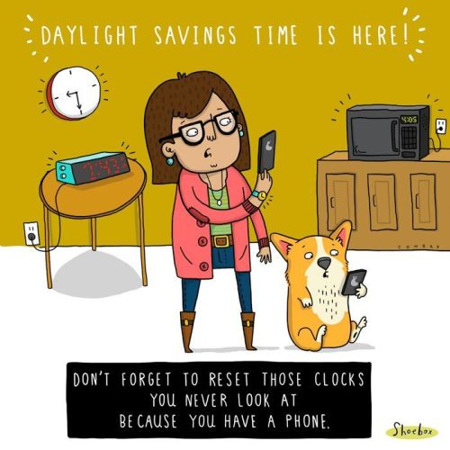 "Image result for humor ""daylight saving time"""