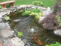 Small Koi Pond Kits | Garden pond and Koi Pond Aeration ...