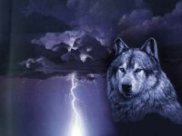 wolf art for cars | Lightning Wolf Image | wolf ...