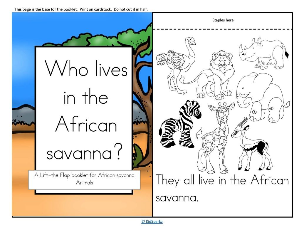 A Lift The Flap Booklet For An African Savanna Animals