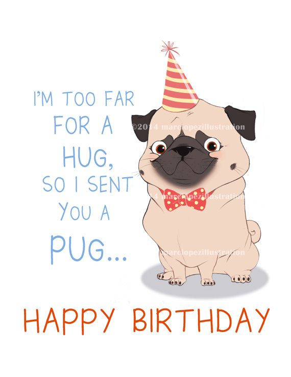 Party Pug Birthday Card Approximately 5 X 7 Blank By