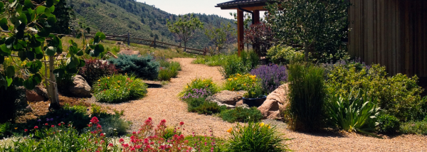 boulder xeriscape experts - outdoor