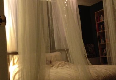 Ideas About Girls Canopy Beds On Pinterest Girls