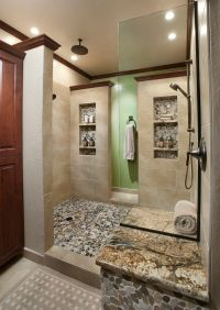 Shower Niche Ideas Bathroom Traditional with 12 X 24 Field ...