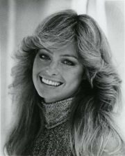 1970s hairstyles - google