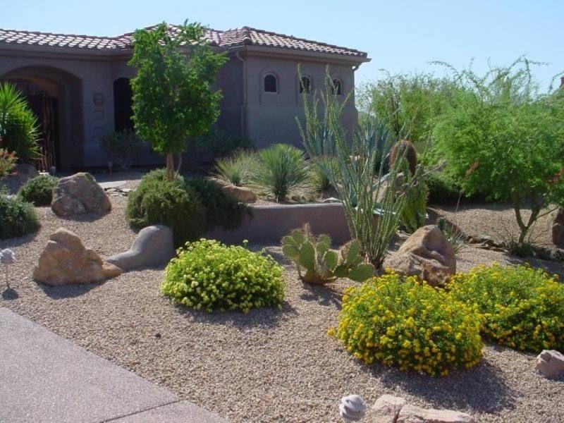 Pictures Of Desert Landscaping Yard Desert Landscaping Ideas