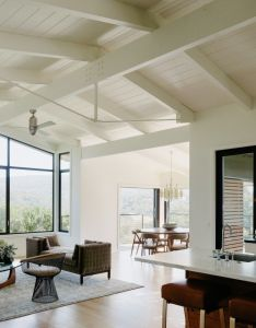 Apartment ideas also california idyll  pitched roof midcentury revival with dramatic rh pinterest